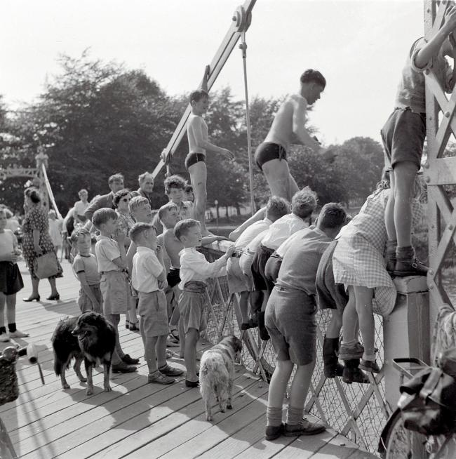 Youngsters jumping off the Victoria Bridge, Hereford, in the 1950s. Picture: Derek Evans, Herefordshire Life Through A Lens