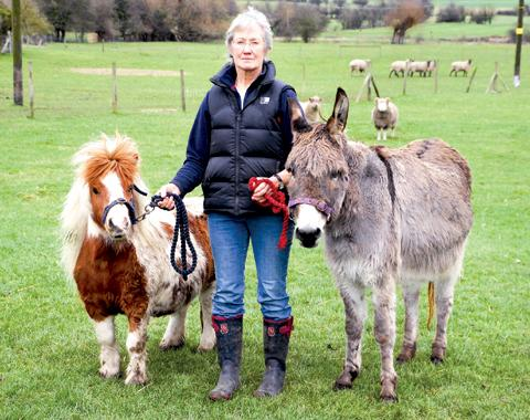 Jan Taylor with some of her own animals