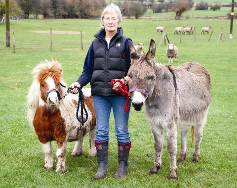 FESTIVE: Janet Taylor of the Farm Animal Sanctuary is holding a fund-raising carol service.