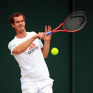 British tennis fans are behind Andy Murray as he attempts to make the Wimbledon final