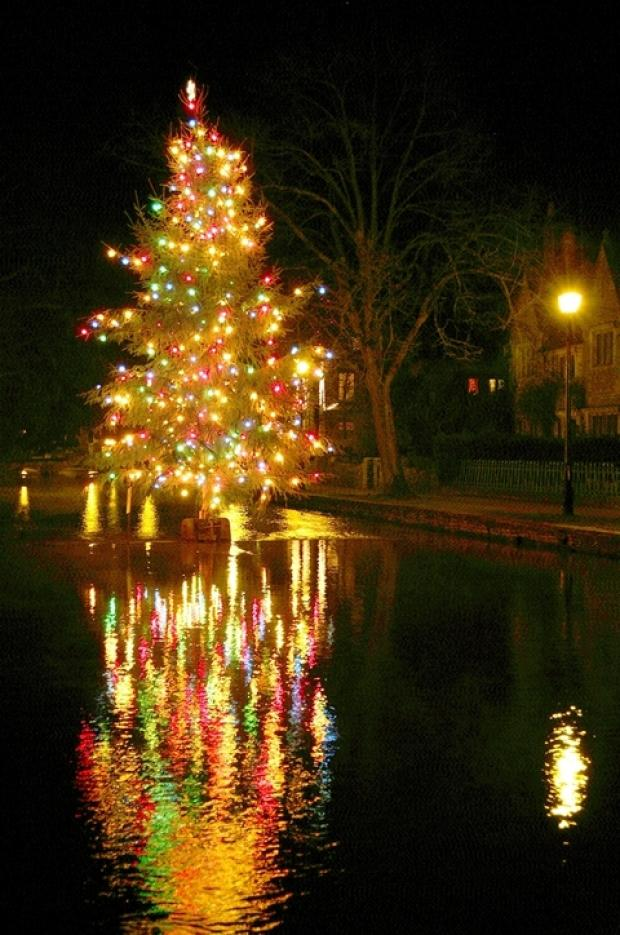 GLOW: Bourton's Christmas tree.