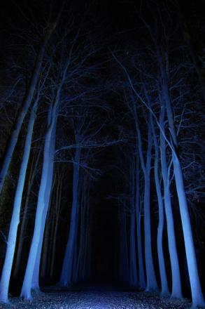 Hidcote's Enchanted Garden is extended