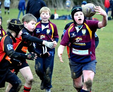 MY BALL: An Evesham Under 10s player keeps hold of possession during the club's mini-rugby festival at Lower Albert Road which saw teams from Under Sevens to 12s age groups do battle. Picture: GINO DI FRANCO.