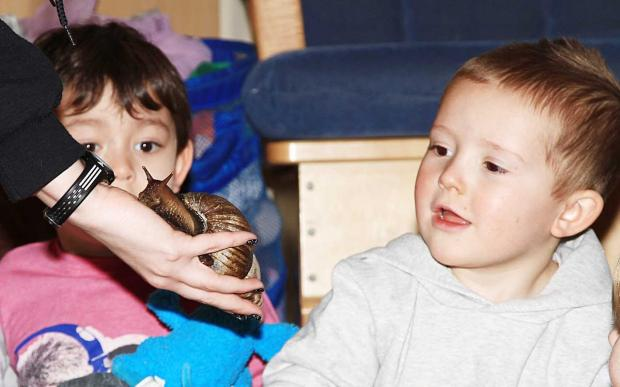 Cotswold Journal: Nursery pre-school member Kai Robinson, aged four, and Liam Faulkner, three, look in wonder as this giant snail slithers into view.