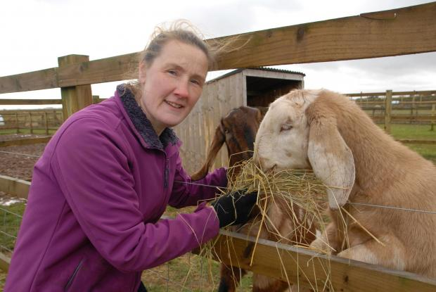 Nicola Laister who owns Fairytale Farm with her husband Nick