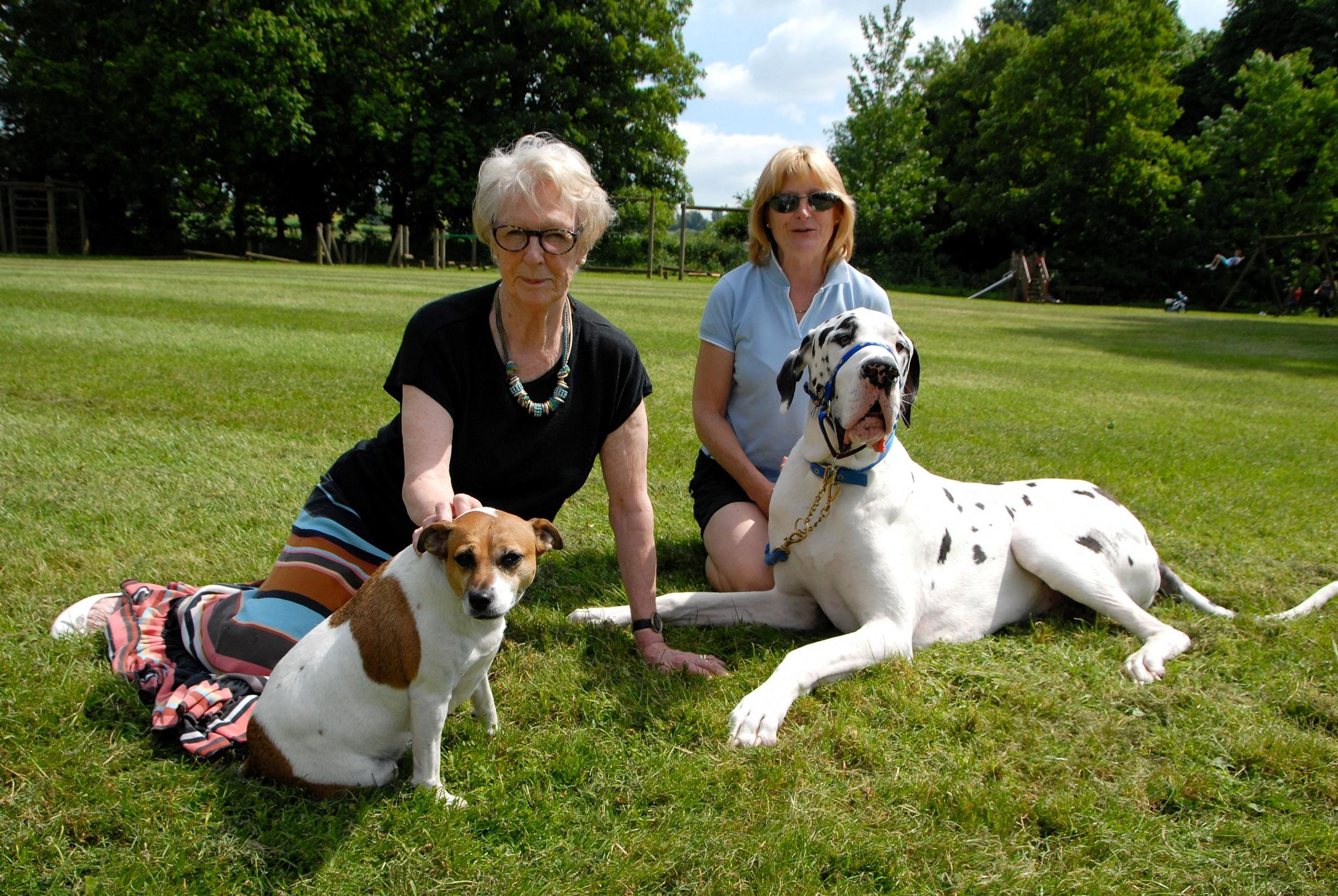 Lin Dean-Smith, left, with Logan, a great dane, and Gillie Longdon with Suki, a Jack Russell. Picture by Paul Jackson. 2514627101