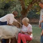 Cotswold Journal: Fans chuckle at Mary Berry's bid to milk a goat