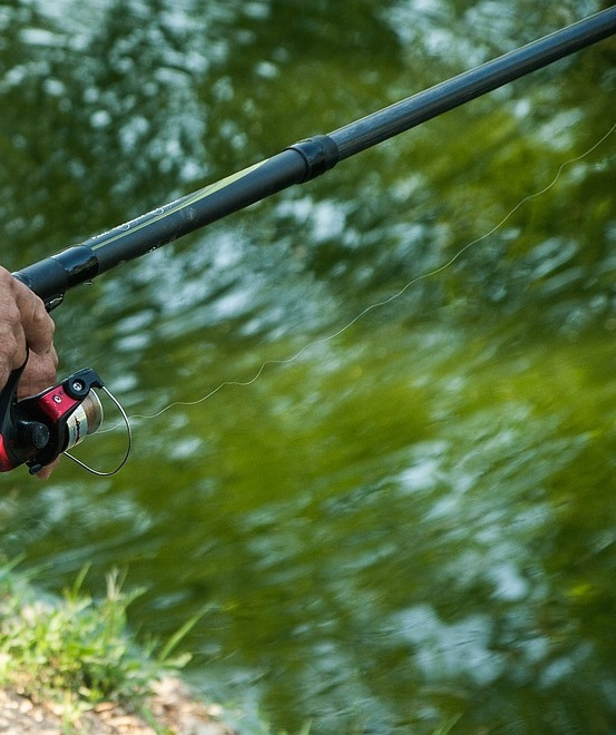 Vale angling round-up