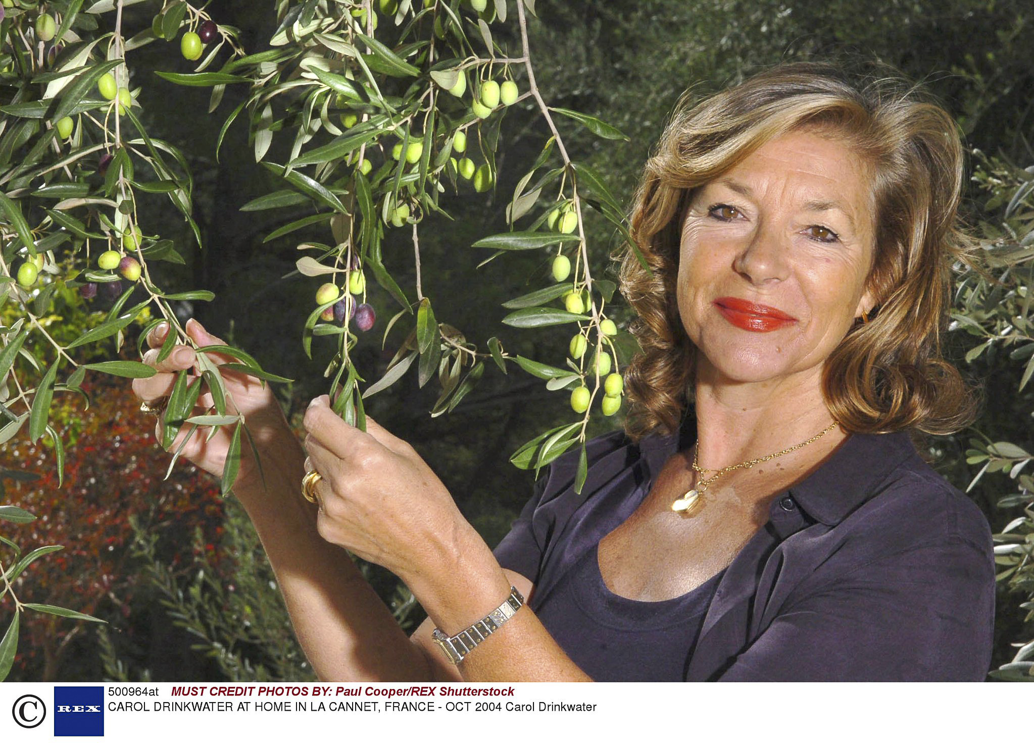 PERFORMER: Carol Drinkwater will appear at Chipping Campden Literature Festival. Photo: Paul Cooper