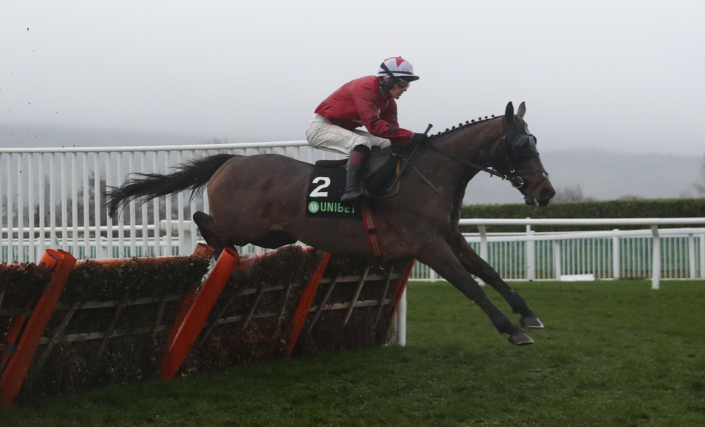 The New One ridden by Sam Twiston-Davies at Cheltenham in what turned out to be the retiring Cotswold horse's final race. Picture: DAVID DAVIES/PA WIRE