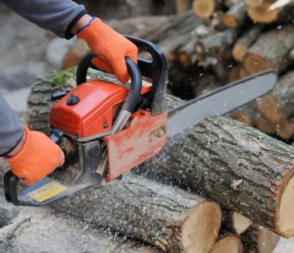 Chainsaw Maintenance and Cross Cutting Course