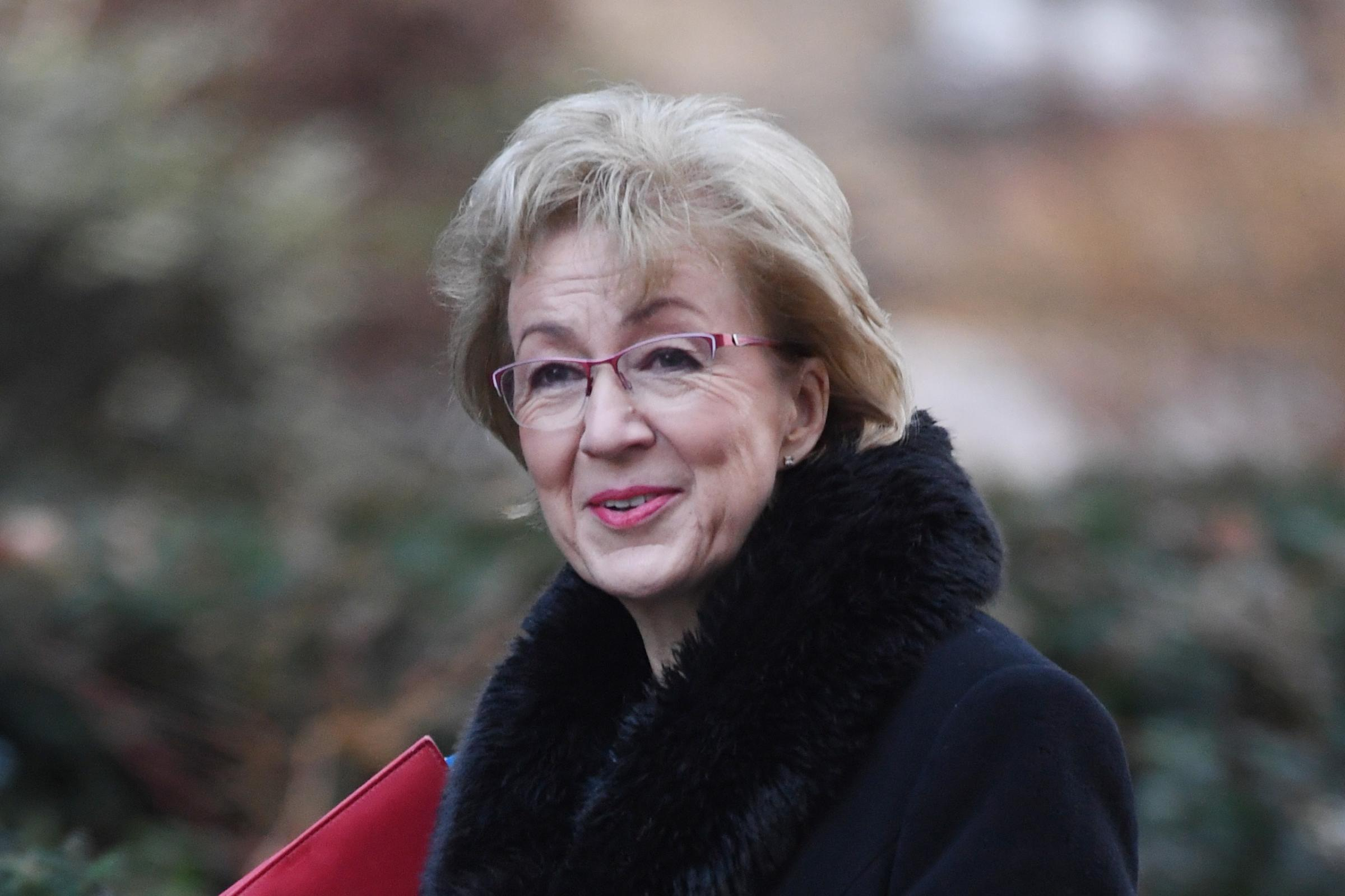Commons Leader Andrea Leadsom