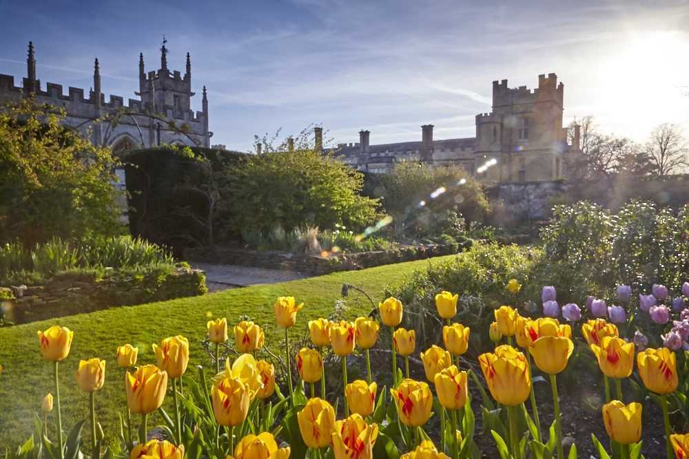Sudeley Castle has a host of seasonal activities and 10 award winning beautiful gardens