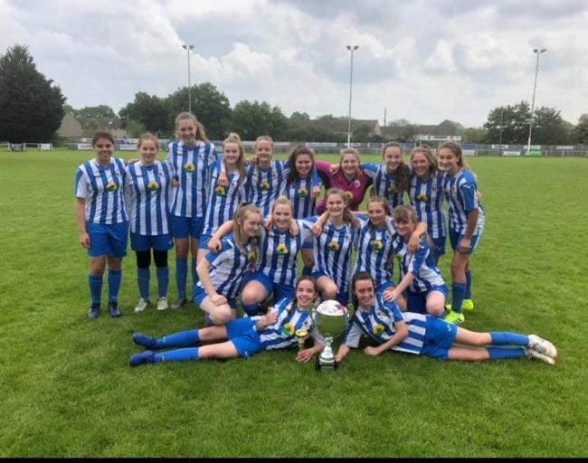 DOUBLE GLORY: Pershore Town girls under-15s.